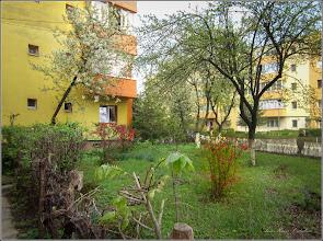 Photo: Turda - Aleea Plopilor , spatiu verde  - 2019.04.15