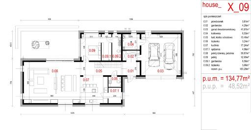 House X09 - Rzut parteru