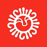 FNS 2020 icon