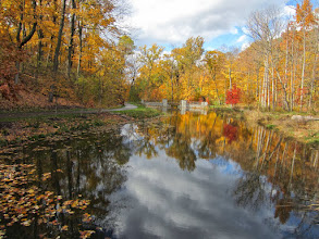 Photo: Fiery colored trees reflected in Dogwood Lake at Hills and Dales Metropark in Dayton, Ohio.