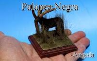 Palanca Negra -Angola-