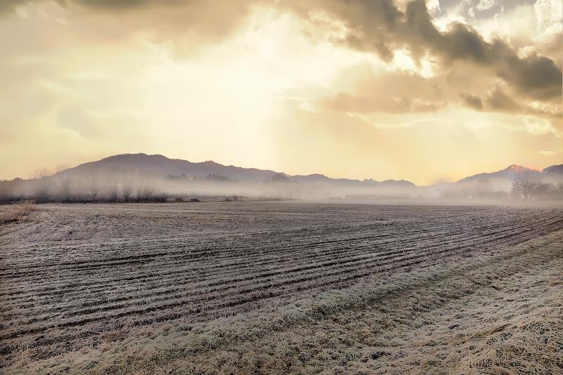 La foschia in pianura di maurizio_varisco