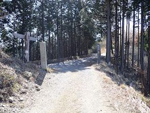 青根ヶ峰の南で林道合流