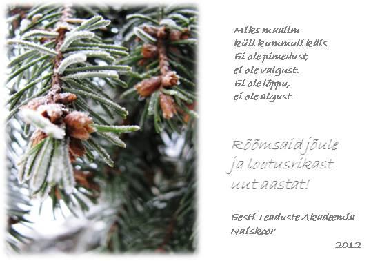 Jõulusoov 2012