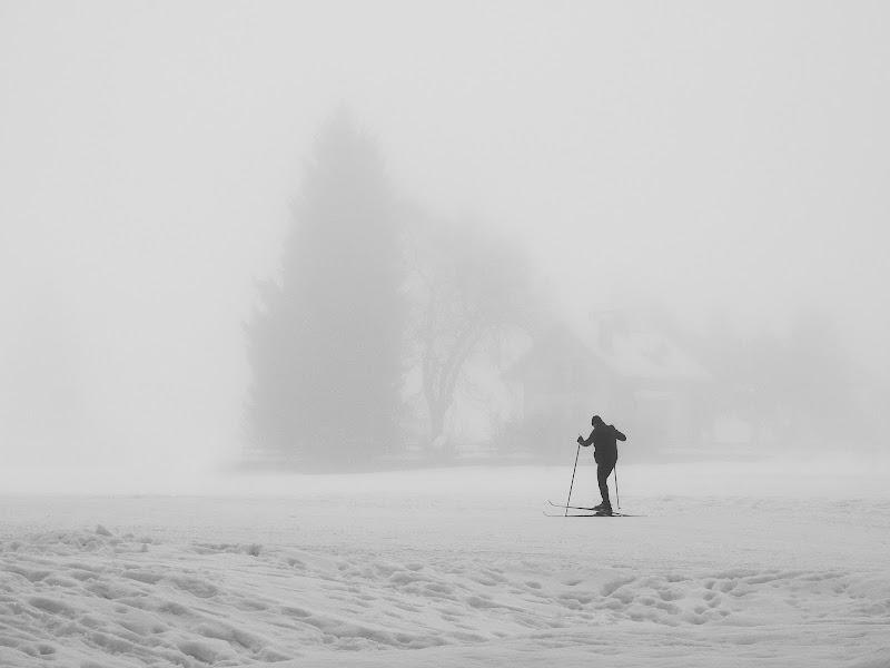 Solo ... in pieno inverno... di BASTET-Clara