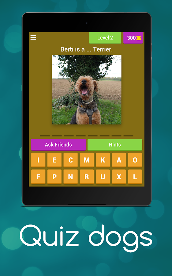 The Dog Picture Quiz - By Ernie And Berti- screenshot