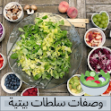 Home Salad Recipes (Without Net) icon