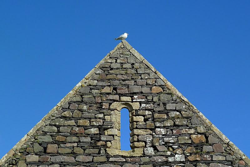 La finestra di Iona di Dariagufo