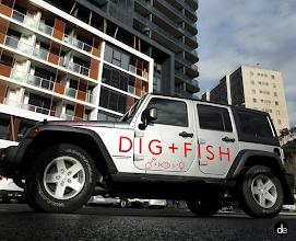 Photo: Dig & Fish Vehicle Branding