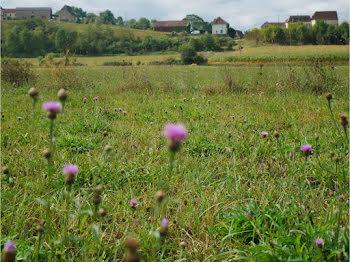 terrain à Viellenave-de-Navarrenx (64)