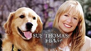 Sue Thomas F.B.Eye thumbnail