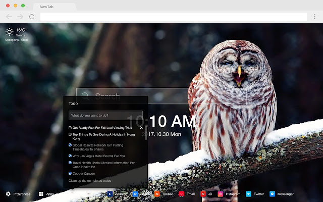 Owl animal HD wallpaper new tab page theme