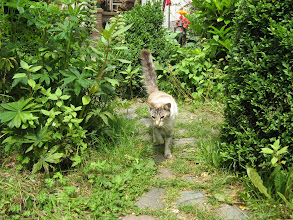 Photo: En dan door naar de tuin