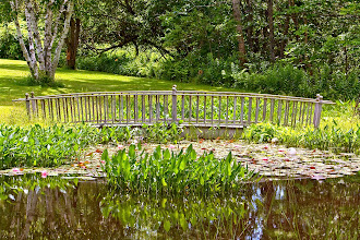 Photo: Small pond, Harpswell, Maine