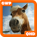 Horses Wallpapers QHD icon