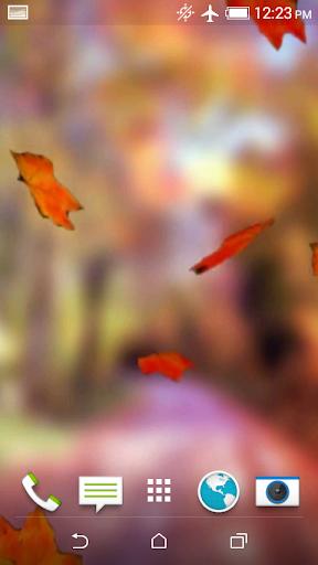 Autumn Video Live Wallpaper