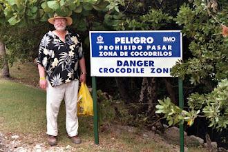 "Photo: ""Crocodile Crossing"" in downtown Cancun."