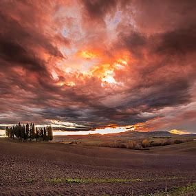 Tramonto in Val d'Orcia by Pasquale Bimonte - Landscapes Sunsets & Sunrises (  )