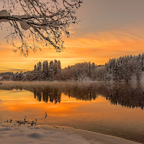 Sunset by the river Nidelven  by Grete Øiamo - Landscapes Sunsets & Sunrises ( sunset, winter, river, water )