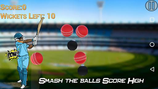 Hit Cricket - Mobile Premier League 1.1 screenshots 1
