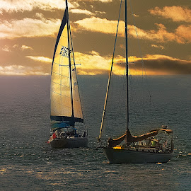 Two Ships in the Night by Sandra Hilton Wagner - Transportation Boats ( sailboat, boats, sailing, twilight, lake, peaceful, transportation )