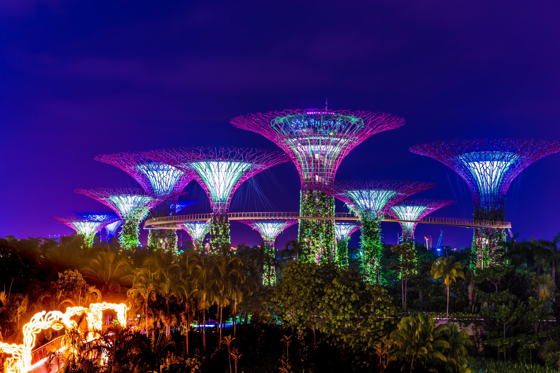 Gardens by the Bay night view4