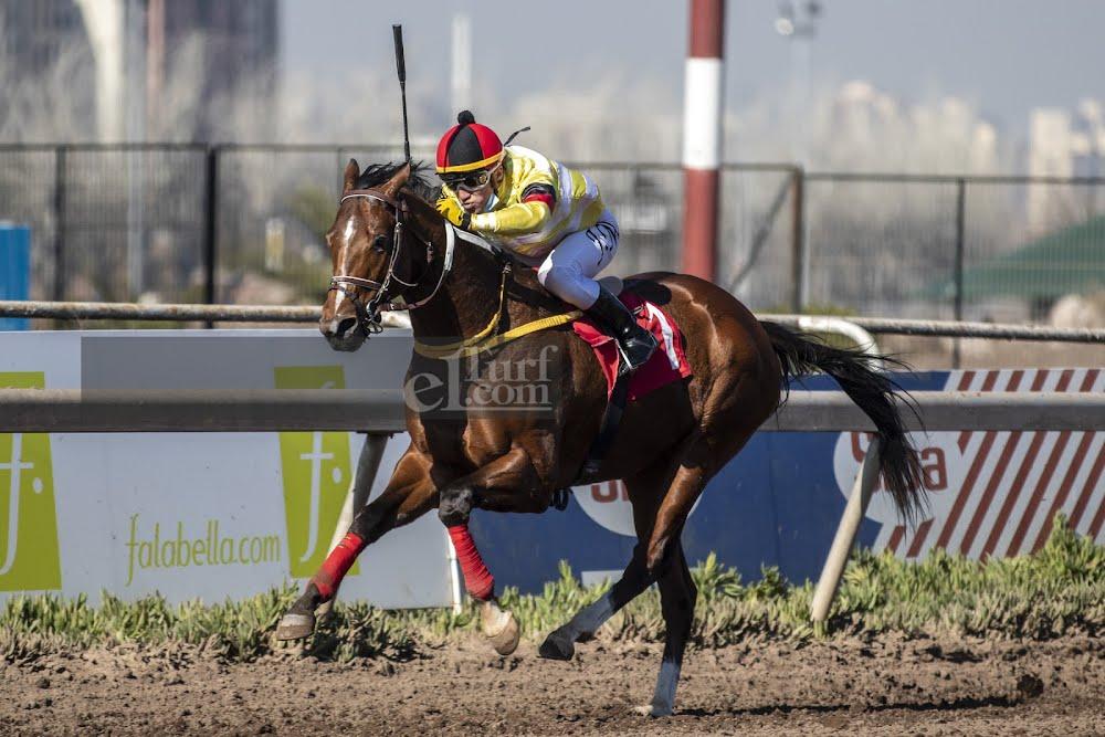 El Aprendiz (Don Cavallo) gana Handicap (1000m-Arena-CHS).