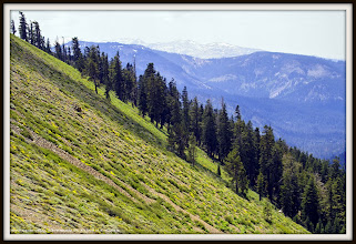 Photo: Above Squaw Valley CA