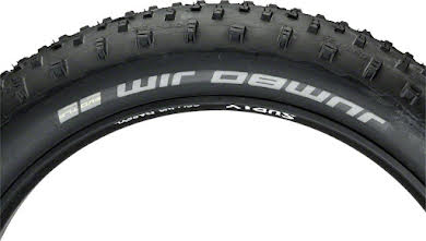 "Schwalbe 26x4.8"" Jumbo Jim SnakeSkin Fat Bike Tire with Addix SpeedGrip alternate image 1"