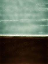 "Photo: ""Rice fields on the lower Colorado"" 5.14 digital 8x10"