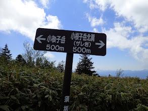 小根子岳まで500m