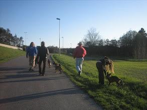 Photo: Alle må trø til når gjengen skal på tur i byen!