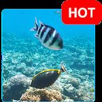 Aquatic Live Wallpaper HD