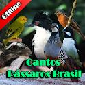 Cantos Pássaros Brasil icon