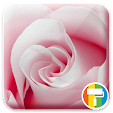 Rose ASUS Z.. file APK for Gaming PC/PS3/PS4 Smart TV