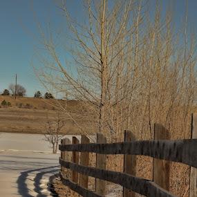 by Bill Dickson - Landscapes Prairies, Meadows & Fields (  )
