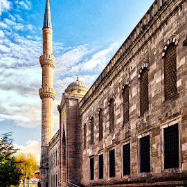Istanbul by Stanley P. - City,  Street & Park  Historic Districts ( istanbul )