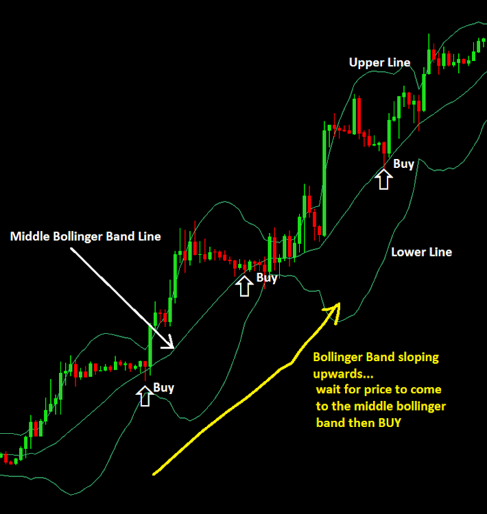 Fozzy forex method daily karvy forex report