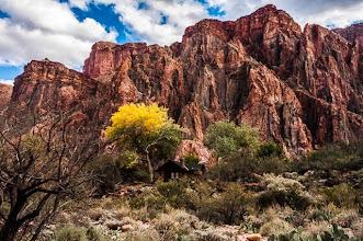 Photo: Ranger cabin at the bottom of the Grand Canyon Nation Park, Arizona, USA