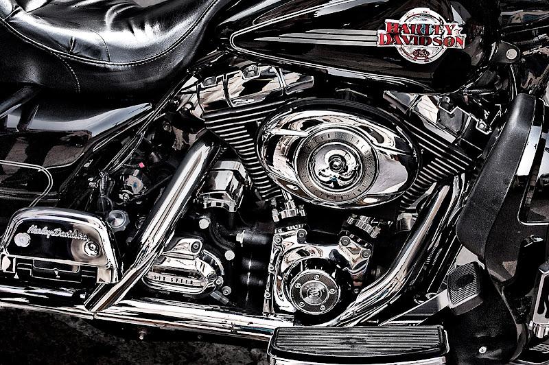 Harley di Pinco_Pallino