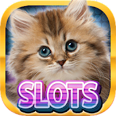 Casino Kitty Free Slot Machine