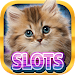 Casino Kitty Free Slot Machine icon