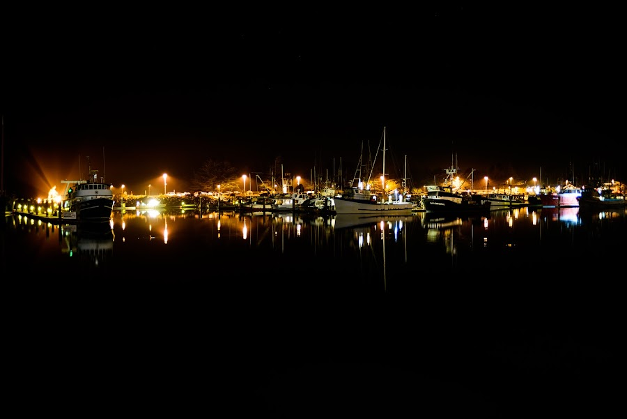 Night In The Harbor by Craig Turner - Transportation Boats ( mountain, travel, beach, bodega bay, sky, nature, tree, snow, tropical ocean, grass, california, horizon, journey, forest, lake, sunlight, rural, vacation, dawn, season, scene, view, natural, panoramic, night lights, beauty, landscape, panorama, sun, lights, tranquil, evening, water, desert, park, boats, beautiful, sea, paradise, amazing, color, blue, sunset, outdoor, background, summer, cloud, scenery, sunrise, logy, eco,  )