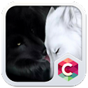 Adorable Dog Theme C Launcher icon