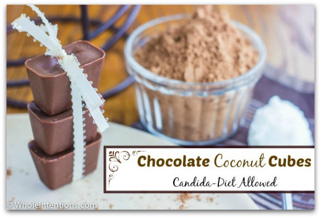 Chocolate Coconut Cubes (Candida Diet Allowed)