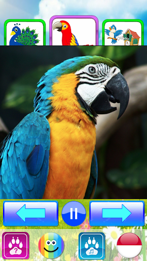 Animal sounds. Learn animals names for kids 5.0 screenshots 24