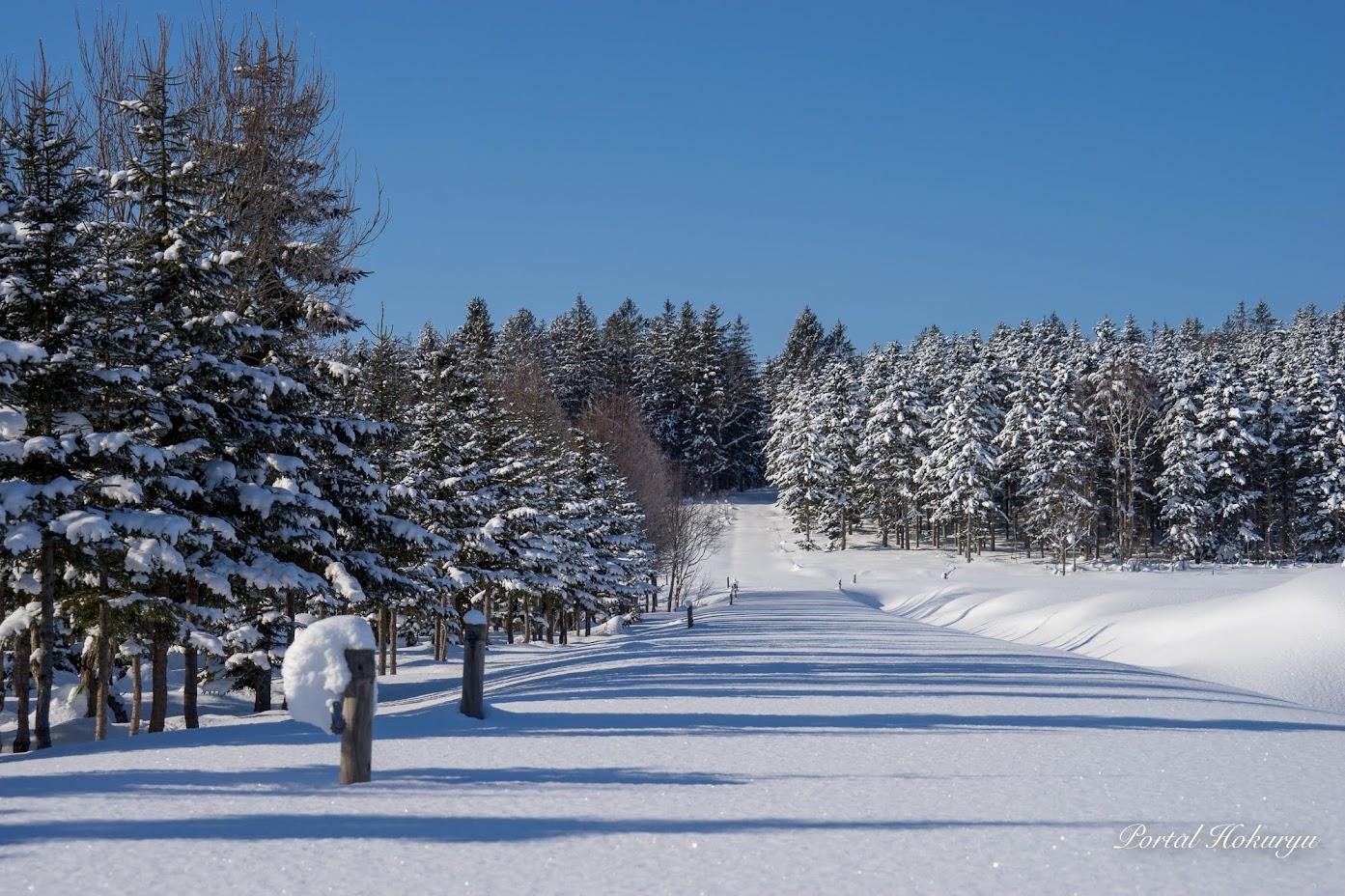 北欧のような風景