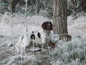 Photo: FRITZ in de sneeuw