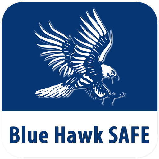 Blue Hawk SAFE file APK for Gaming PC/PS3/PS4 Smart TV