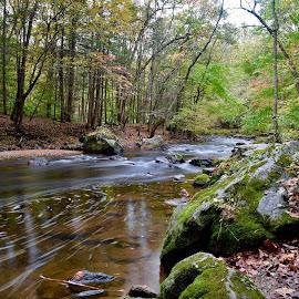 An Autumn Walk by Santford Overton - Landscapes Waterscapes ( nature, autumn, waterscape, colors, trees, leaves, landscape,  )
